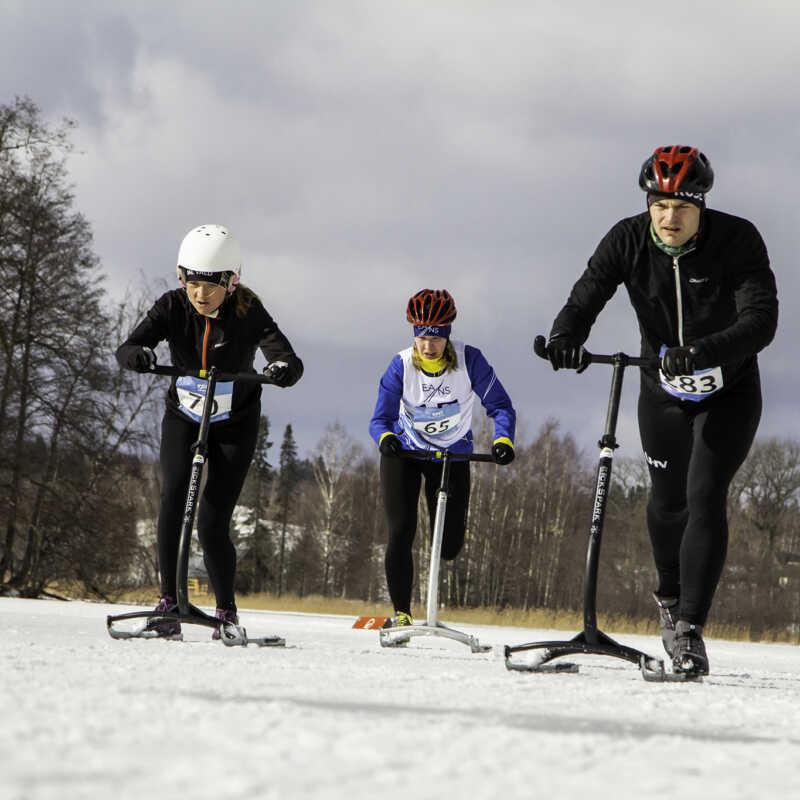 Talispartakiaad 2019 - Tõukekelgusõit, 09.03.2019. a. @Pühajärve rand, foto: Kaimo Puniste